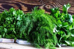 kuda_utilizirovat_zelen
